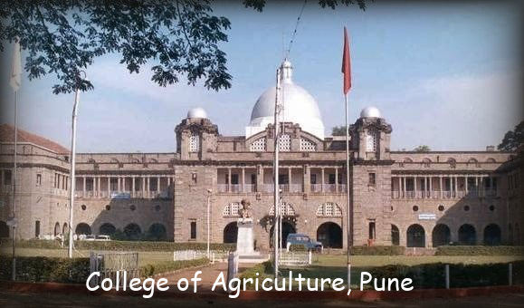 College of Agri, Pune